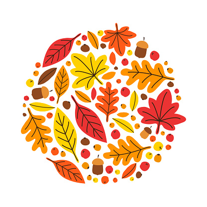 Cute Botanical Hand Drawn Autumn Leaves Background Stock Illustration Download Image Now Istock