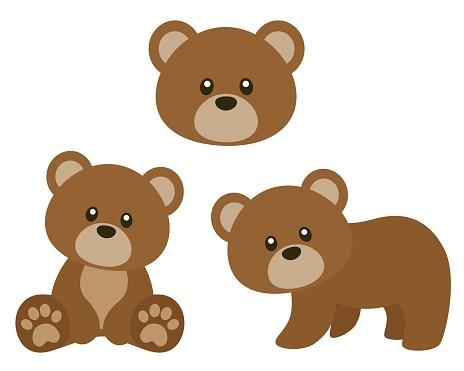 Cute Brown Bear Vector Illustration Set