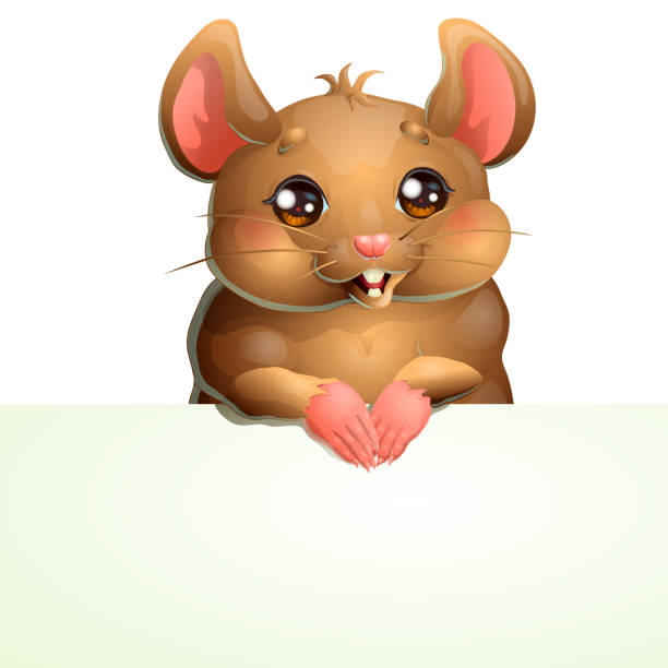Bекторная иллюстрация Cute brown mouse and banner on white