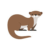 Cute brown otter funny animal character vector Illustration isolated on a white background.