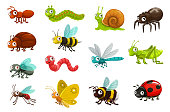 Cute bugs and insects cartoon characters. Happy smiling ant, caterpillar and snail, spider, beetle and bee, fly, earthworm and dragonfly, grasshopper, mosquito and butterfly, bumblebee, ladybug vector
