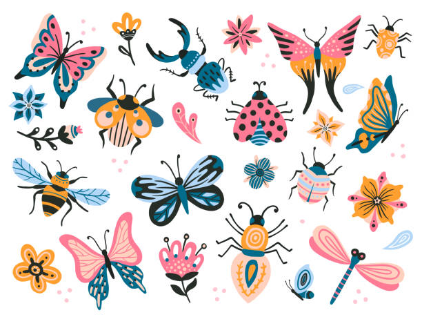 illustrazioni stock, clip art, cartoni animati e icone di tendenza di cute bugs. child drawing insects, flying butterflies and baby ladybird. flower butterfly, fly insect and beetle flat vector set - farfalla ramo