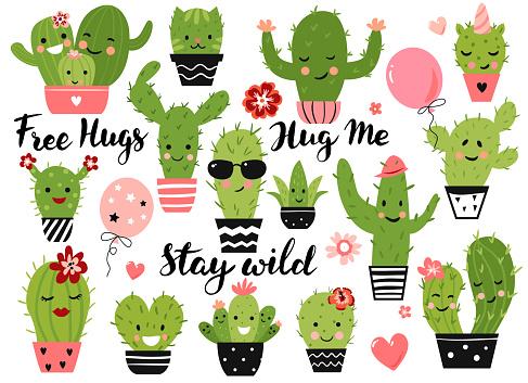 Cute cactus plant.
