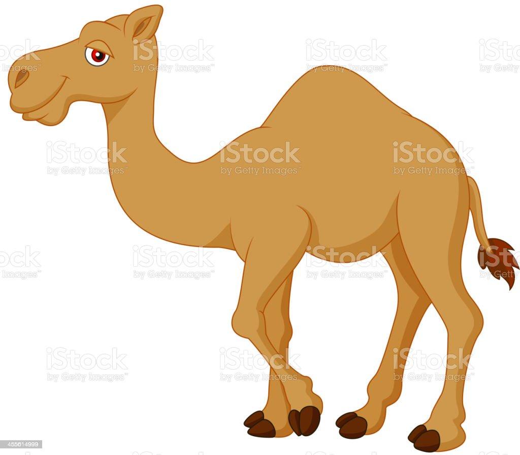 camel clip art vector images amp illustrations istock