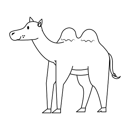 Cute Camel Cartoon Stock Illustration - Download Image Now