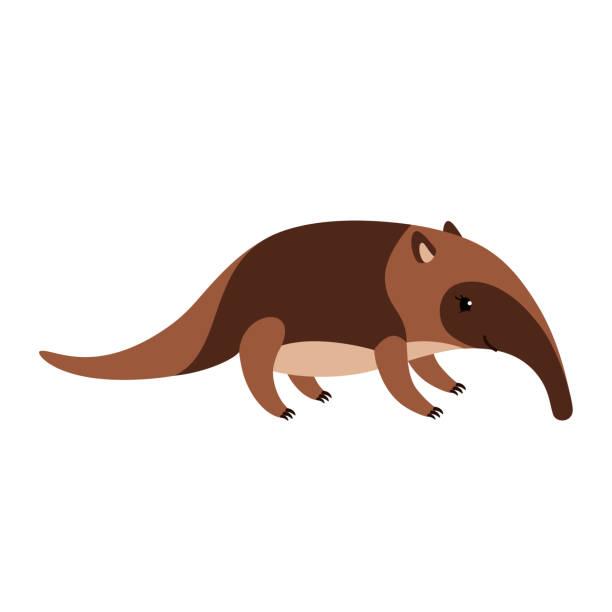 niedlichen cartoon ameisenbär isoliert auf weißem hintergrund. - ameisenbär stock-grafiken, -clipart, -cartoons und -symbole