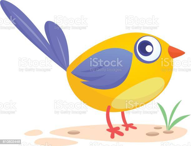 Cute cartoon bird vector illustration vector id810803448?b=1&k=6&m=810803448&s=612x612&h=k3yg7eink54rfcyevy8lvj89ymhivxo5inmhxhgnc80=