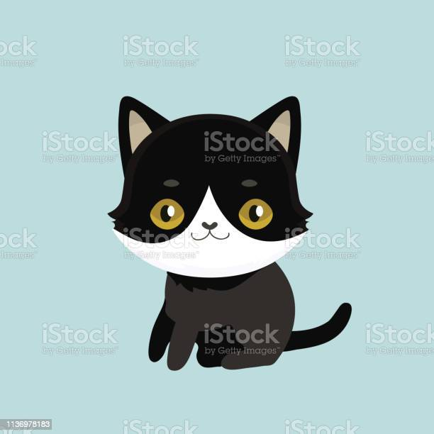 Cute cartoon black cat with big eyes vector id1136978183?b=1&k=6&m=1136978183&s=612x612&h=xvzdlwcgk0xi7h0cmwjs4tbkbxt7mizflwjz9kbq2i0=