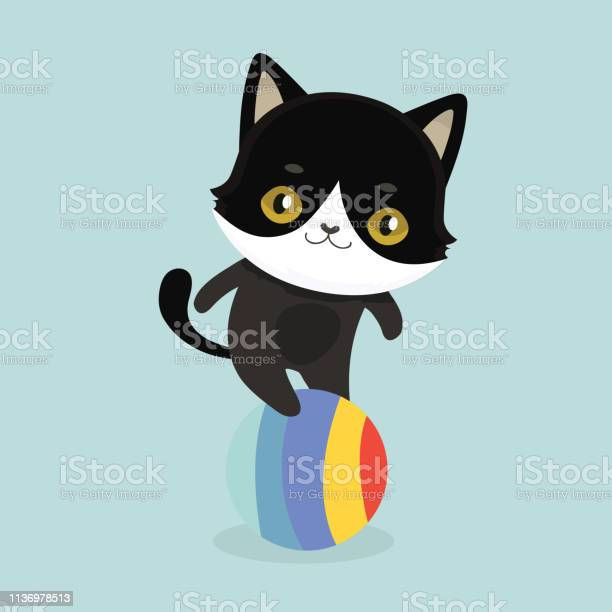 Cute cartoon black cat with big eyes vector id1136978513?b=1&k=6&m=1136978513&s=612x612&h=cbw0civ4gsk9xyzgs g snd xdsx35bxtc4t7uej5hy=