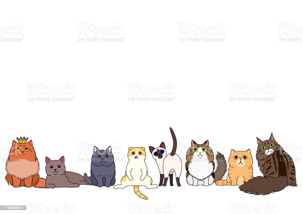Cute Cartoon Cats Sitting In A Row Stock Illustration Download Image Now Istock