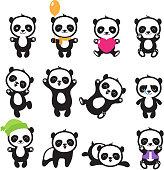 Cute cartoon chinese panda bear vector character set. Chinese bear panda set, character cartoon animal illustration
