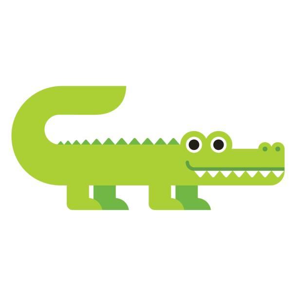cute cartoon crocodile - crocodile stock illustrations