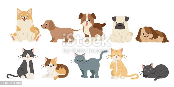istock cute cartoon dogs and cats 1161291186