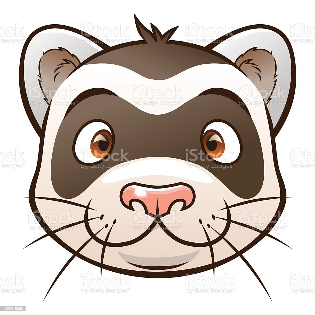 royalty free ferret clip art vector images illustrations istock rh istockphoto com ferret clipart cartoon ferret clipart