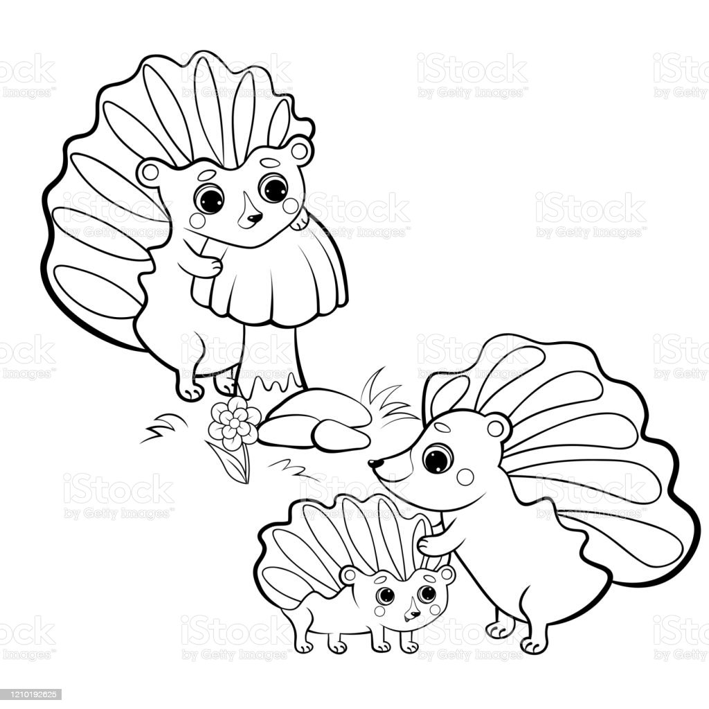 Cute Cartoon Hedgehog Family Vector Coloring Page Outline Male And Female  Hedgehogs With Their Young Hedgehog