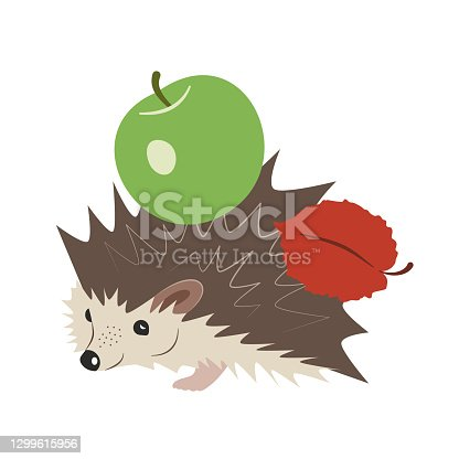 istock Cute cartoon hedgehog with a green apple and a red leaf on the back. Hand-drawn vector, flat style. Forest animals, autumn time. Design element for children's manuals, illustrations, printing,  web. 1299615956
