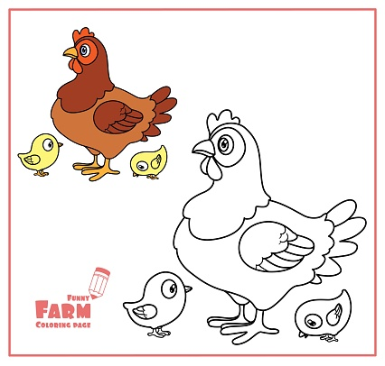 Civciv Renk Ile Sevimli Karikatur Tavuk Ve Boyama Sayfasi Icin