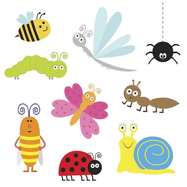 stockillustraties, clipart, cartoons en iconen met cute cartoon insect set. ladybug, dragonfly, butterfly, caterpillar, ant, spider - rups