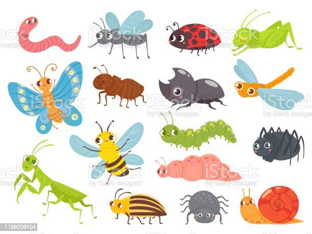 Cute cartoon insects funny caterpillar and butterfly children bugs vector id1188209104?b=1&k=6&m=1188209104&s=612x612&h=dx8oqmkf3dwzzvggti81k29jfjihpaz8bsxnhwbvbky=