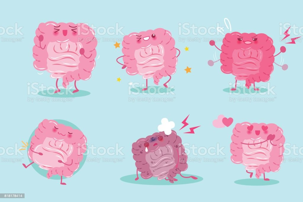 cute cartoon intestine vector art illustration