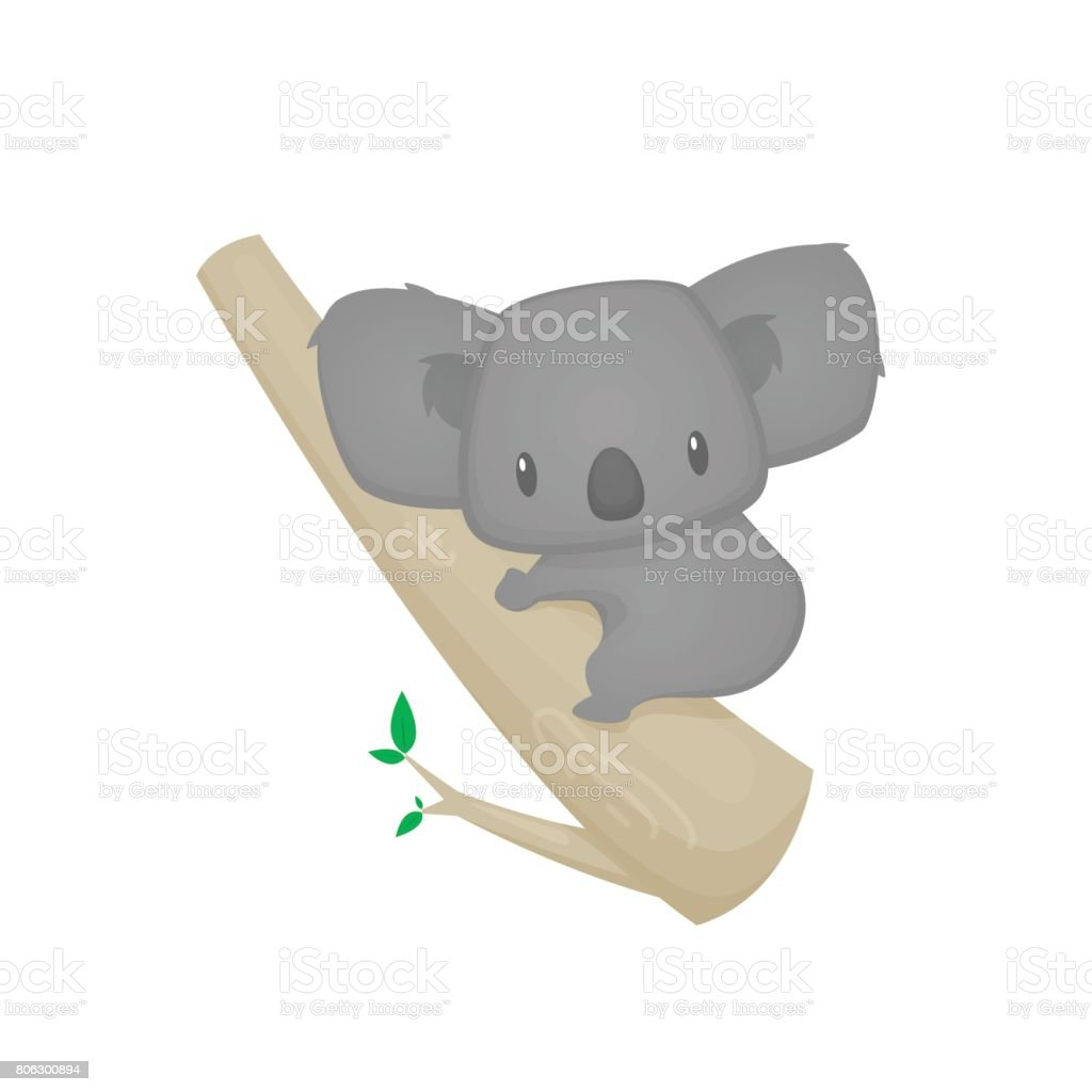 Cute cartoon koala on a tree vector vector art illustration