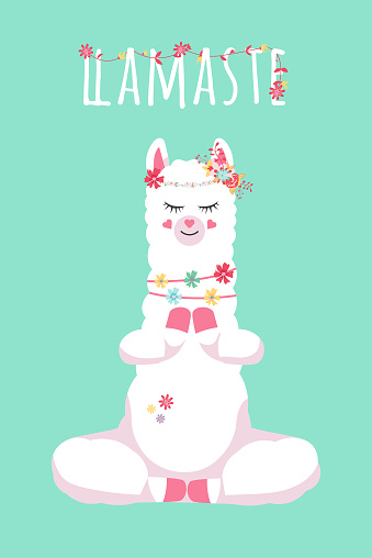 cute cartoon lama alpaca in youga pose and hand drawn lettering quote-llamaste. Vector Illustration. unique design for cards, posters, t-shirts, invitations