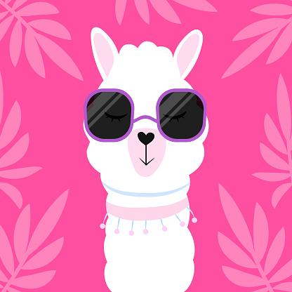 Cute cartoon llama with glasses