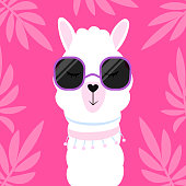 Cute cartoon llama with glasses. Vector illustration isolated on a lush tropical background.