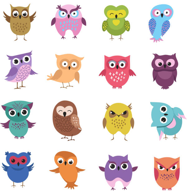 cute cartoon owl characters vector set - sowa stock illustrations