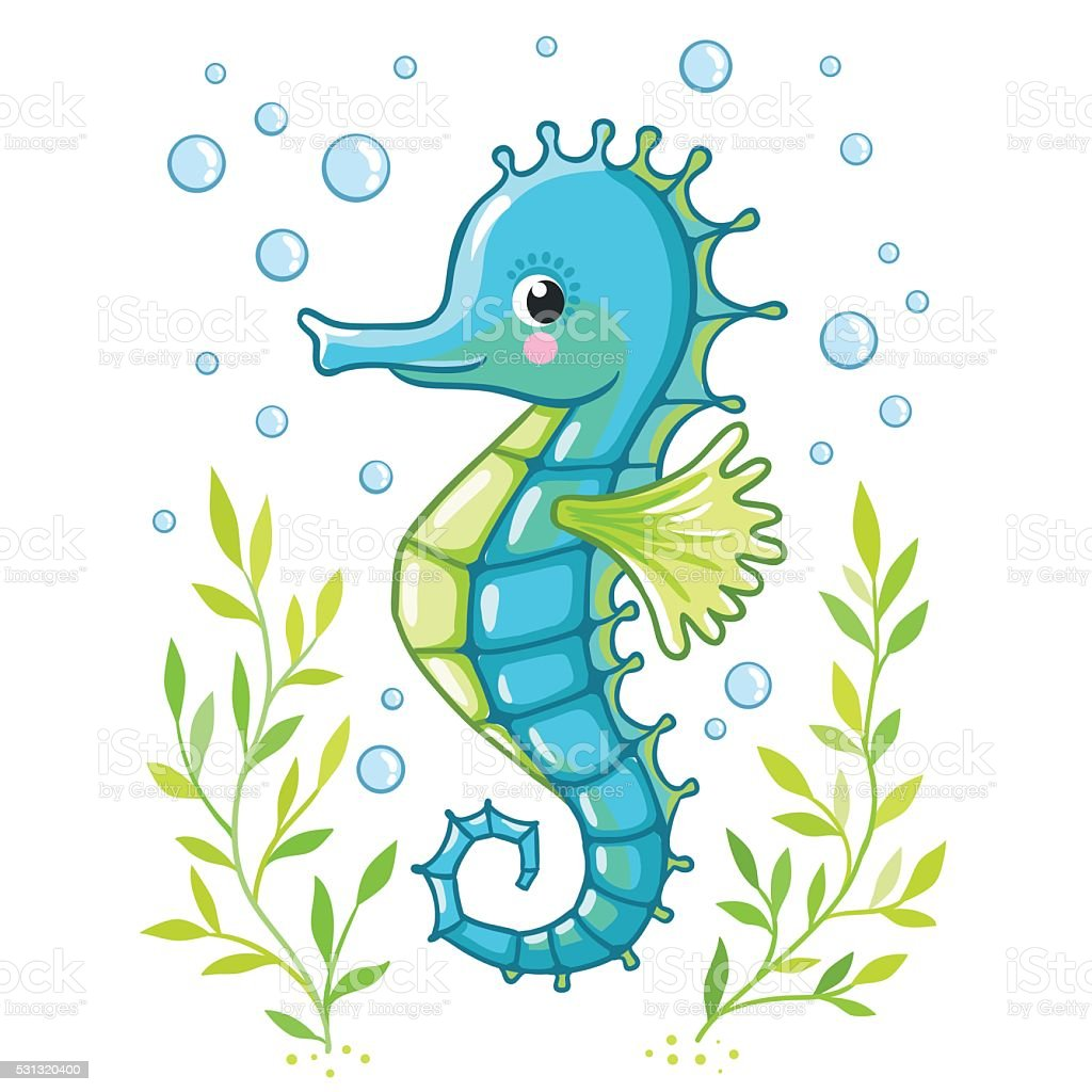 Cute Cartoon Sea Horse Isolated Stock Illustration Download Image Now Istock