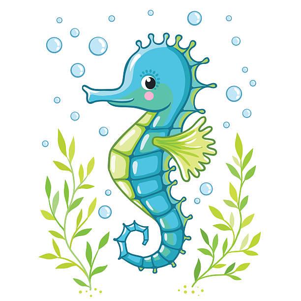 Cute cartoon Sea horse isolated. Cute cartoon Sea horse isolated. Seahorse and algae on a white background, vector illustration. sea horse stock illustrations