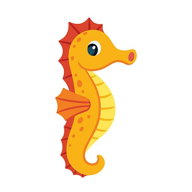 Cute cartoon seahorse Cute cartoon orange seahorse. Isolated vector illustration. sea horse stock illustrations