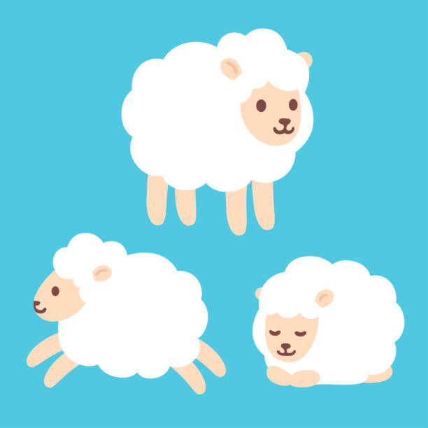 Cute cartoon sheep set Cute cartoon baby sheep drawing set. Standing, jumping and sleeping. Adorable little lamb character vector illustration. counting stock illustrations
