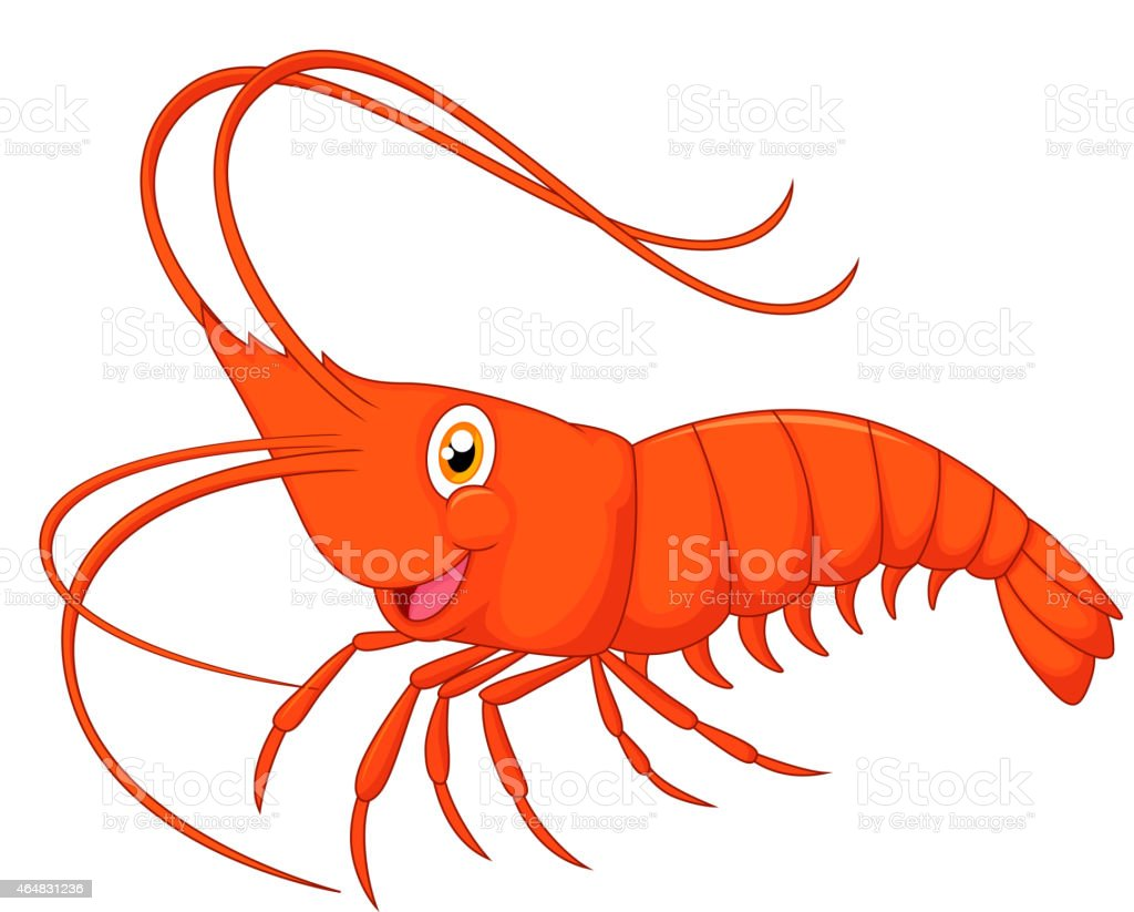 Cute cartoon shrimp vector art illustration