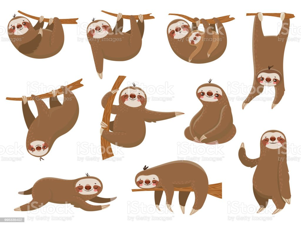 Cute cartoon sloths. Adorable rainforest animals, mother and baby on branch, funny sloth animal sleeping on jungle tree vector set vector art illustration