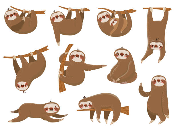 Cute cartoon sloths. Adorable rainforest animals, mother and baby on branch, funny sloth animal sleeping on jungle tree vector set Cute cartoon sloths. Adorable rainforest animals at zoo, mother and baby family on branch, funny parents sloth animal sleeping hanging on jungle tree colorful vector isolated icon set baby sloth stock illustrations