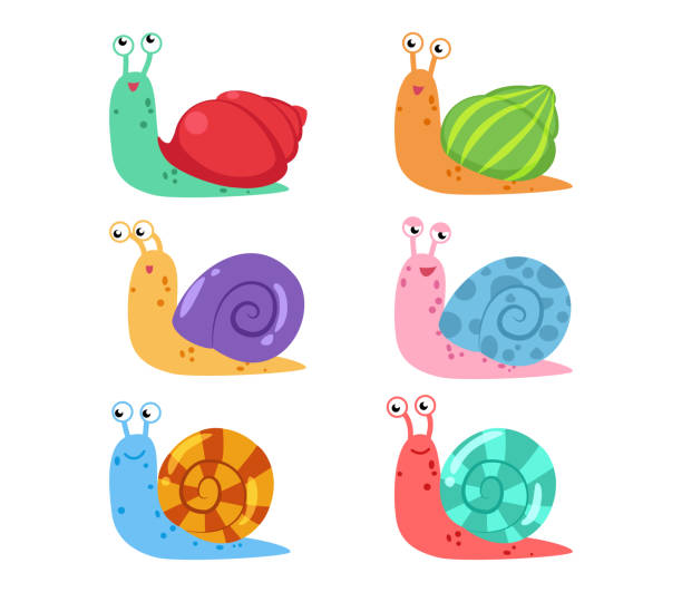 cute cartoon snail vector set with different shells on white background - snail stock illustrations