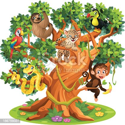 Vector Illustration of a Parrot, Sloth, Jaguar, Tucan, Snake and Monkey sitting in a Big Jungle Tree  [b]Please contact me if you have any questions or if you need help with the file. mail(at)anjarabenstein.de[/b]  [url=http://www.istockphoto.com/my_lightbox_contents.php?lightboxID=13603638][IMG]http://www.anjarabenstein.de/istock/Lightboxes_WildAnimal.jpg[/IMG][/url]