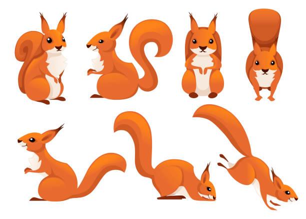 illustrations, cliparts, dessins animés et icônes de ensemble mignon d'écureuil de dessin animé. drôle de petite collection d'écureuils bruns. emotion petit animal. conception de caractère animal de dessin animé. illustration plate de vecteur d'isolement sur le fond blanc - écureui