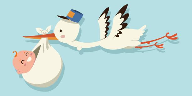 illustrazioni stock, clip art, cartoni animati e icone di tendenza di cute cartoon stork and baby. vector illustration of a flying bird carrying a newborn kid isolated on a blue background. - neonato