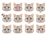 Cute cartoon style Cat faces with different expression emoticon icon vectors set