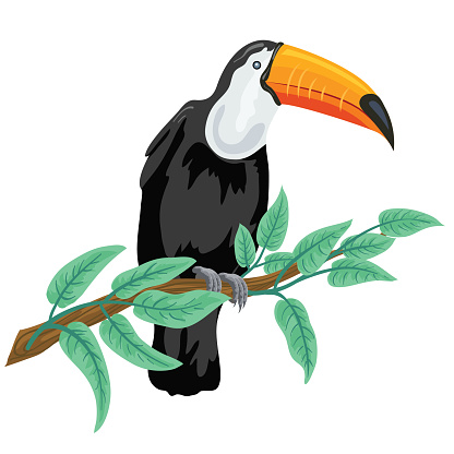 Cute Cartoon Toucan Perched On A Branch