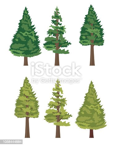 Cute Cartoon Tree on white background.