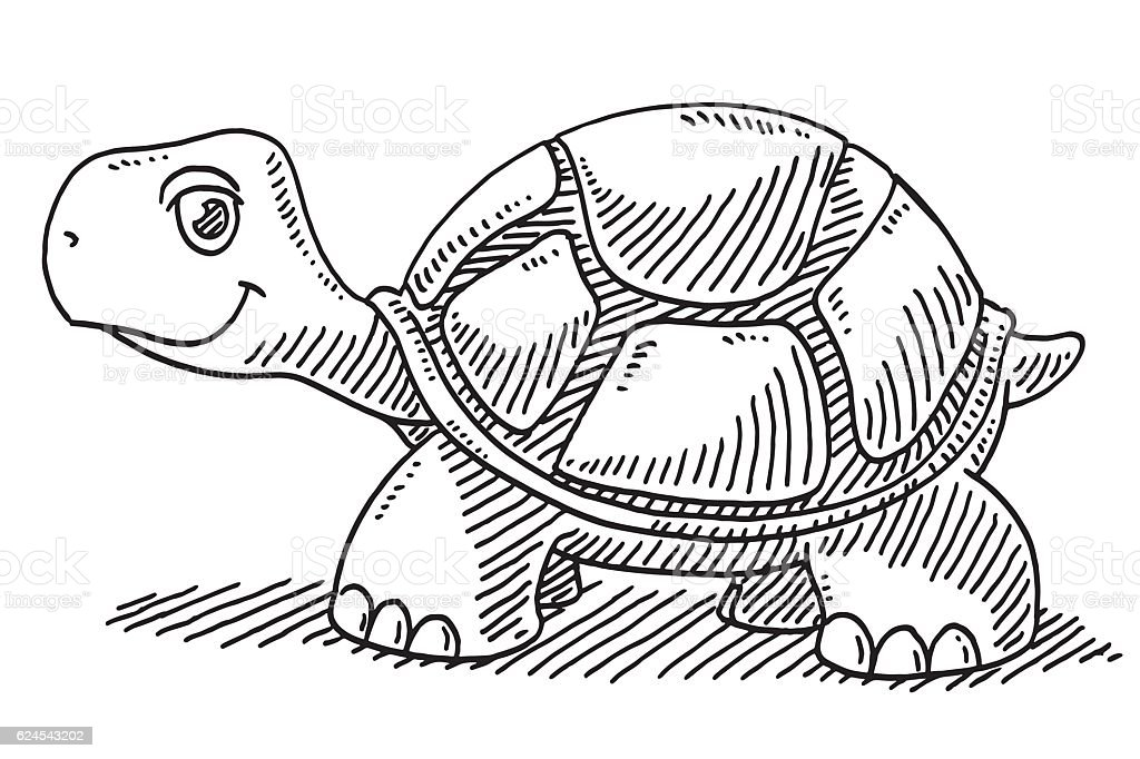 cute cartoon turtle drawing stock vector art more images of animal