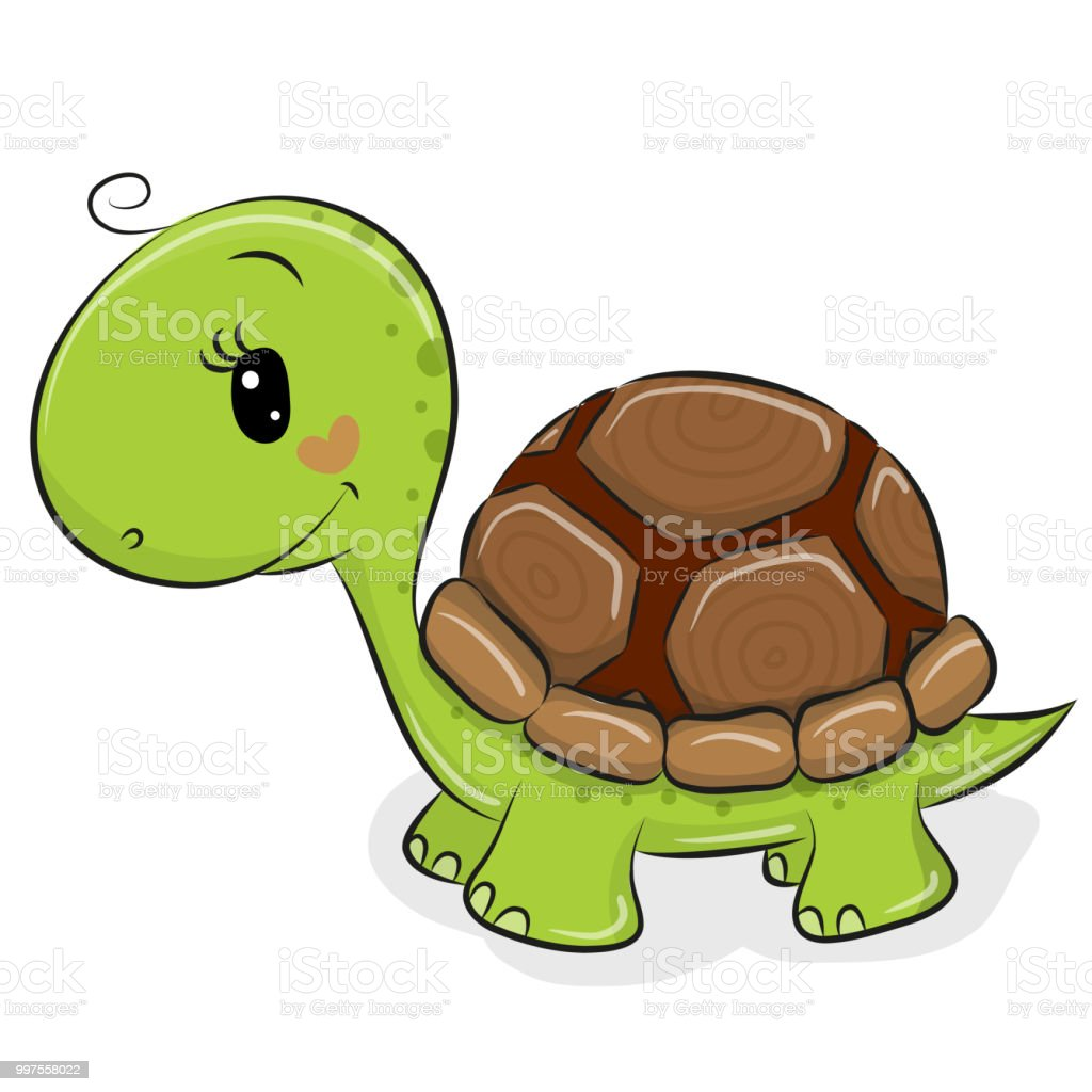 Cute Cartoon Turtle On A White Background Stock Illustration
