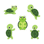 Cute cartoon turtles in different actions .