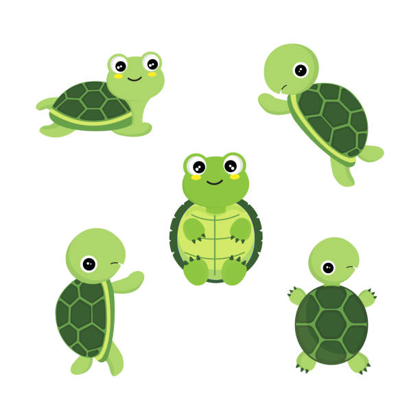 Cute cartoon turtles in different actions . Cute cartoon turtles in different actions . turtle stock illustrations