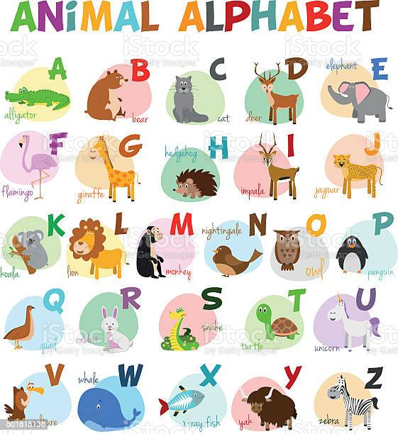 Cute cartoon zoo illustrated alphabet with funny animals english vector id501815138?b=1&k=6&m=501815138&s=612x612&h=i9nnrjfvmcfyc voefn5iv lblvruoq4b9b jbxweeq=