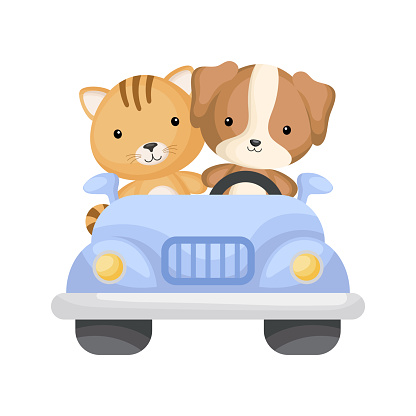 Cute cat and dog driver on car. Graphic element for childrens book, album, scrapbook, postcard or mobile game.