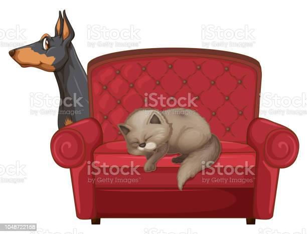 Cute cat and dog on couch vector id1048722158?b=1&k=6&m=1048722158&s=612x612&h=v2xgmat 2ghwwpbs tl7limmq3lelpjkrzmpcwzmc e=